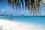 カリブ海イメージカット2.jpg
